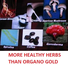 Jimms coffee have more healthy herbs than organo gold