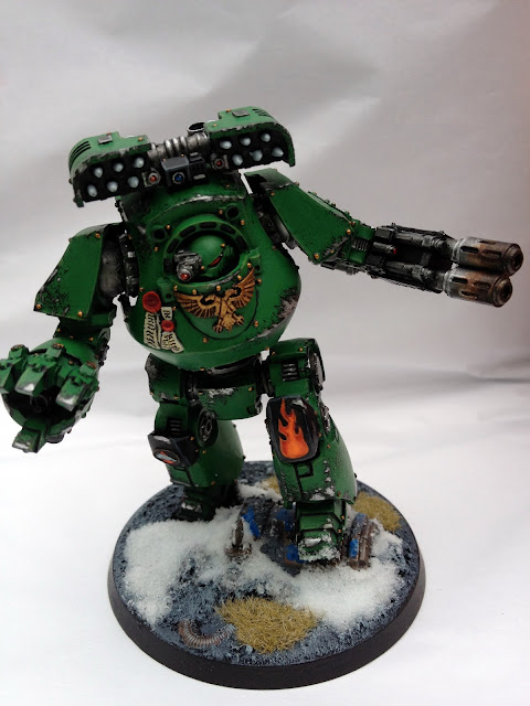 Salamanders Contemptor - Front View