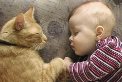 Little Kid sleeping With Pet Photos