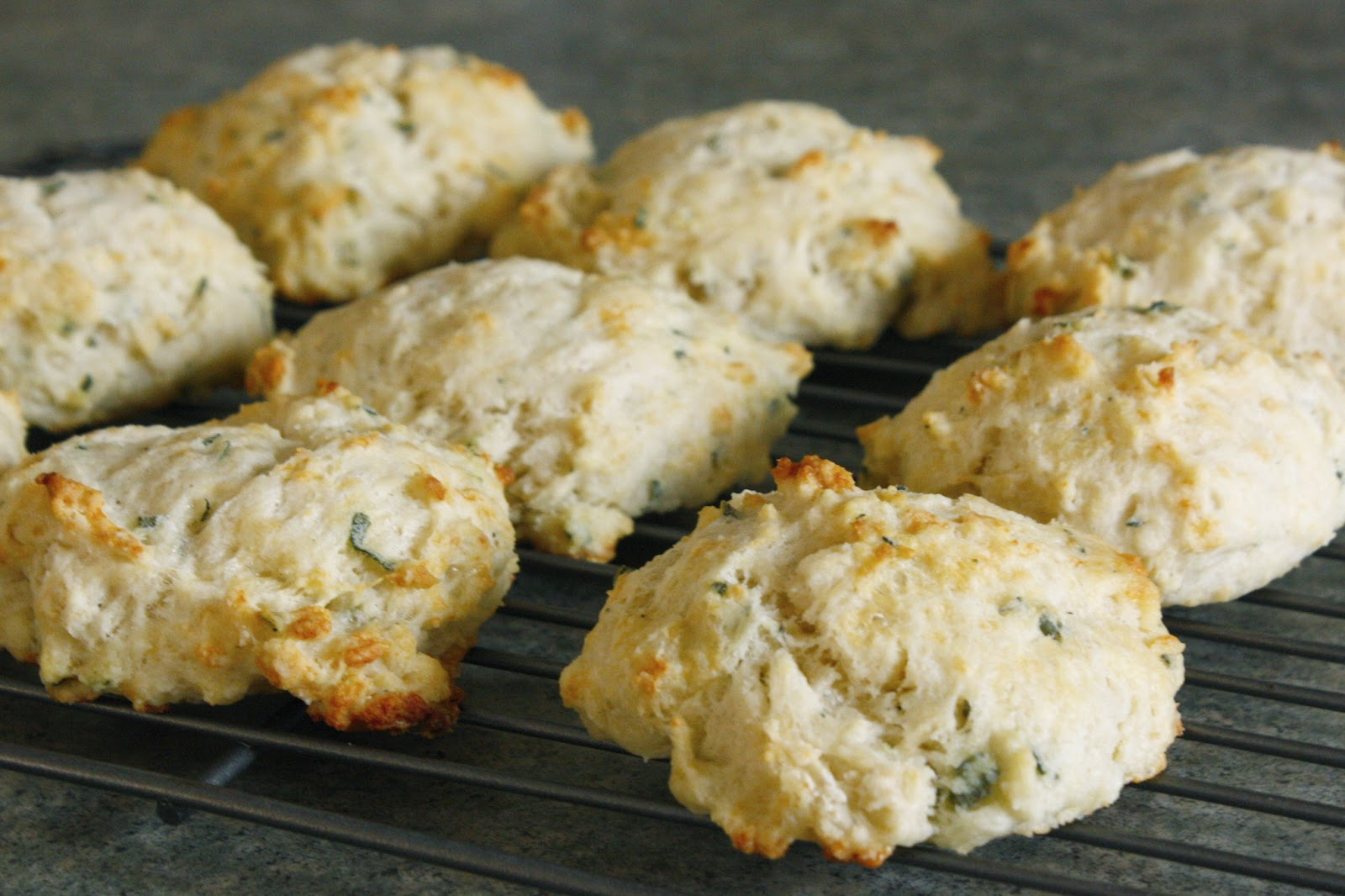 lobster cheddar bay biscuits cheddar and jalapeno biscuits cheddar ...