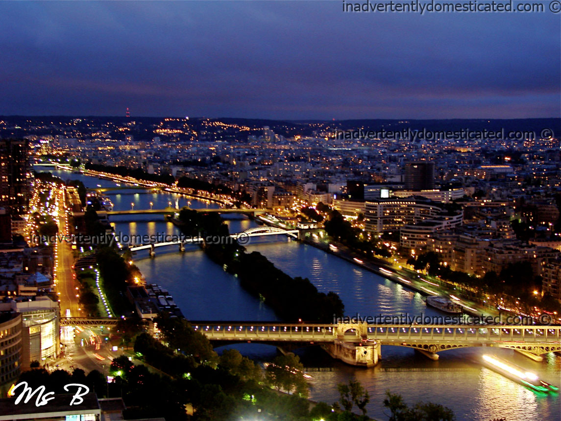 Paris: Paris City Of L...