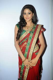 Sushma Raj glam pics in saree 003.jpg