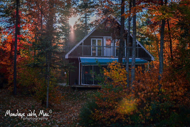 ottawa photographers