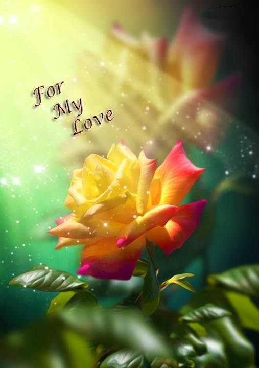 i love u nice wallpaper image
