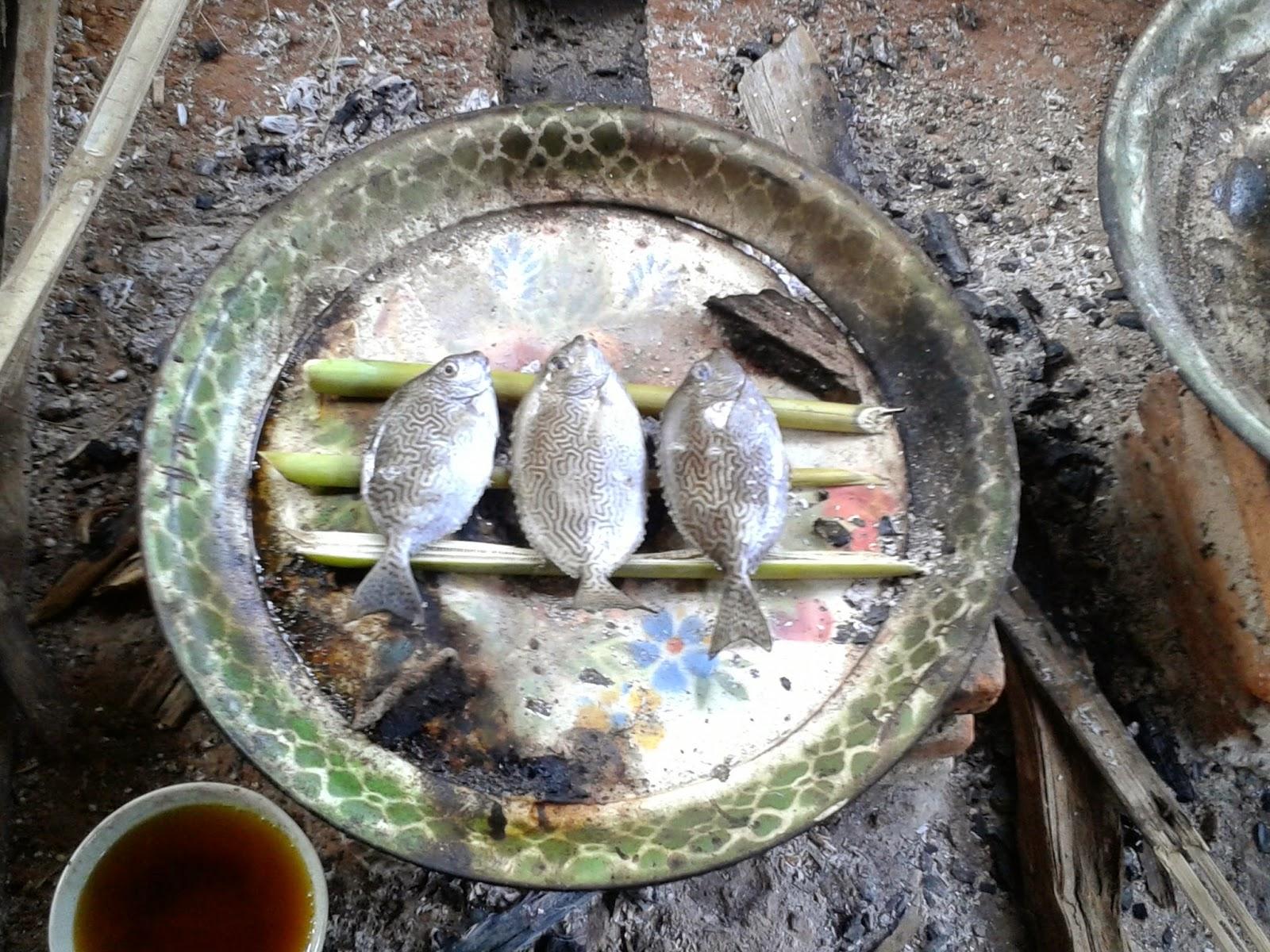 Proses pembakaran Ikan Semadar/Baronang