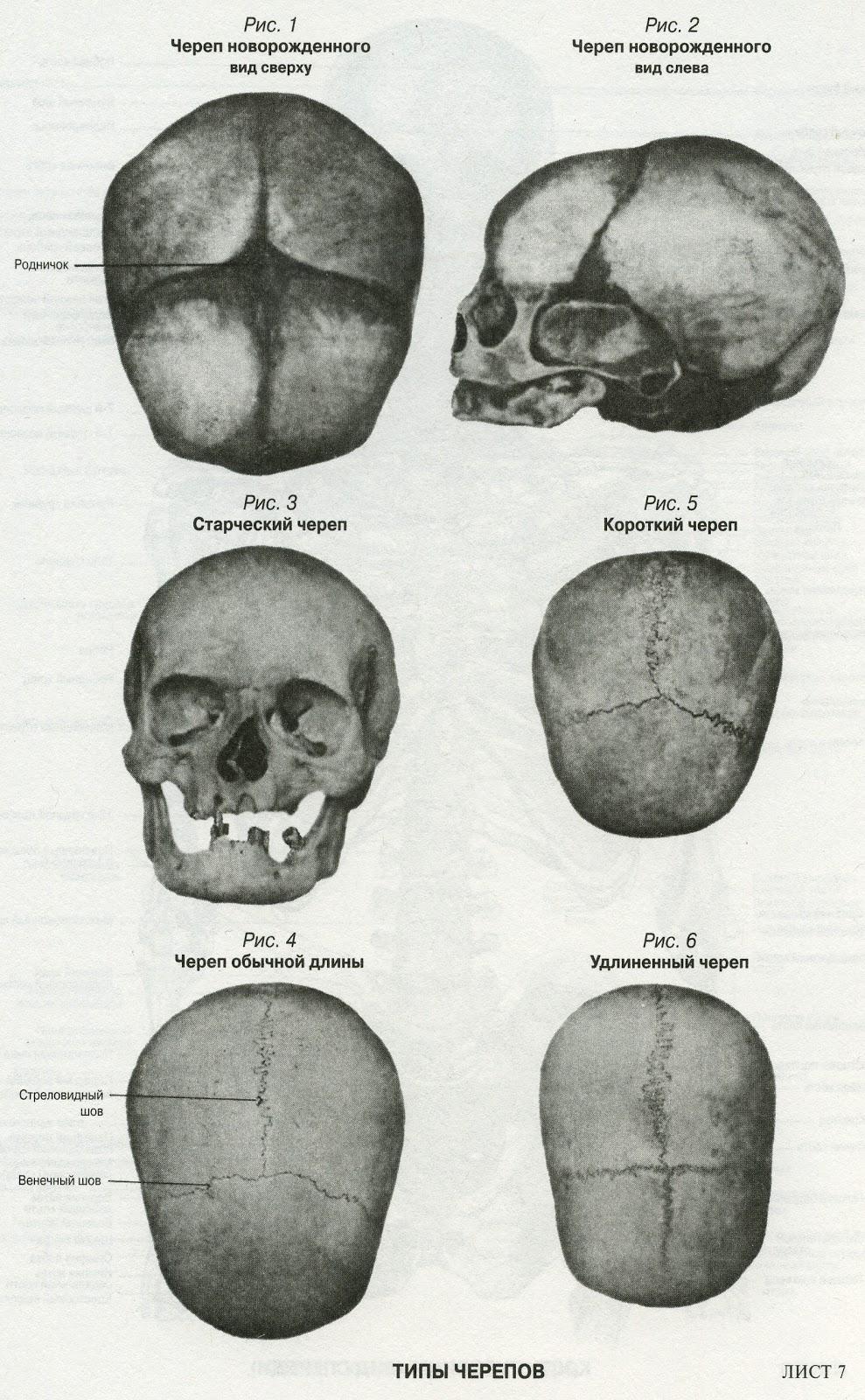 Малыш на приеме у невролога. Форма и размер 38