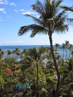 Maui Honeymoon Packages
