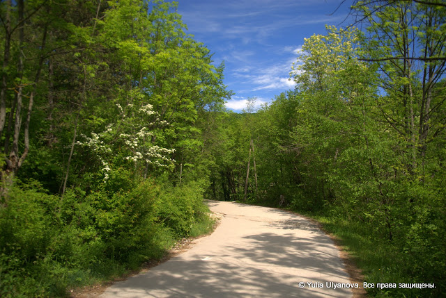 Дорога в заповеднике Плитвицкие озера. Хорватия