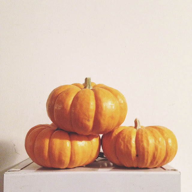 Lil baby pumpkins