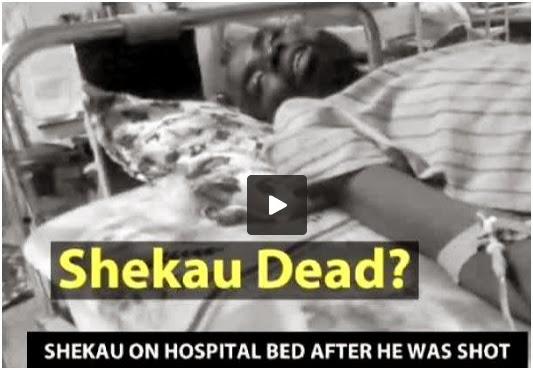 boko haram leader shekau dead