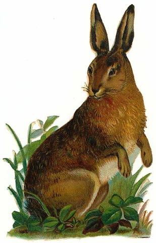 Vintage rabbit clip art