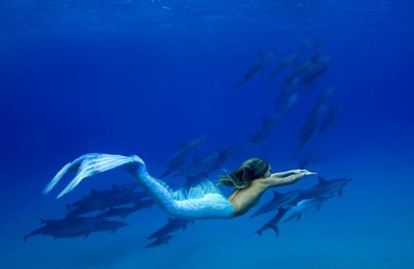 Pictures of Real Mermaids http://comellee.blogspot.com/2011/08/real-mermaids-are-they-fact.html