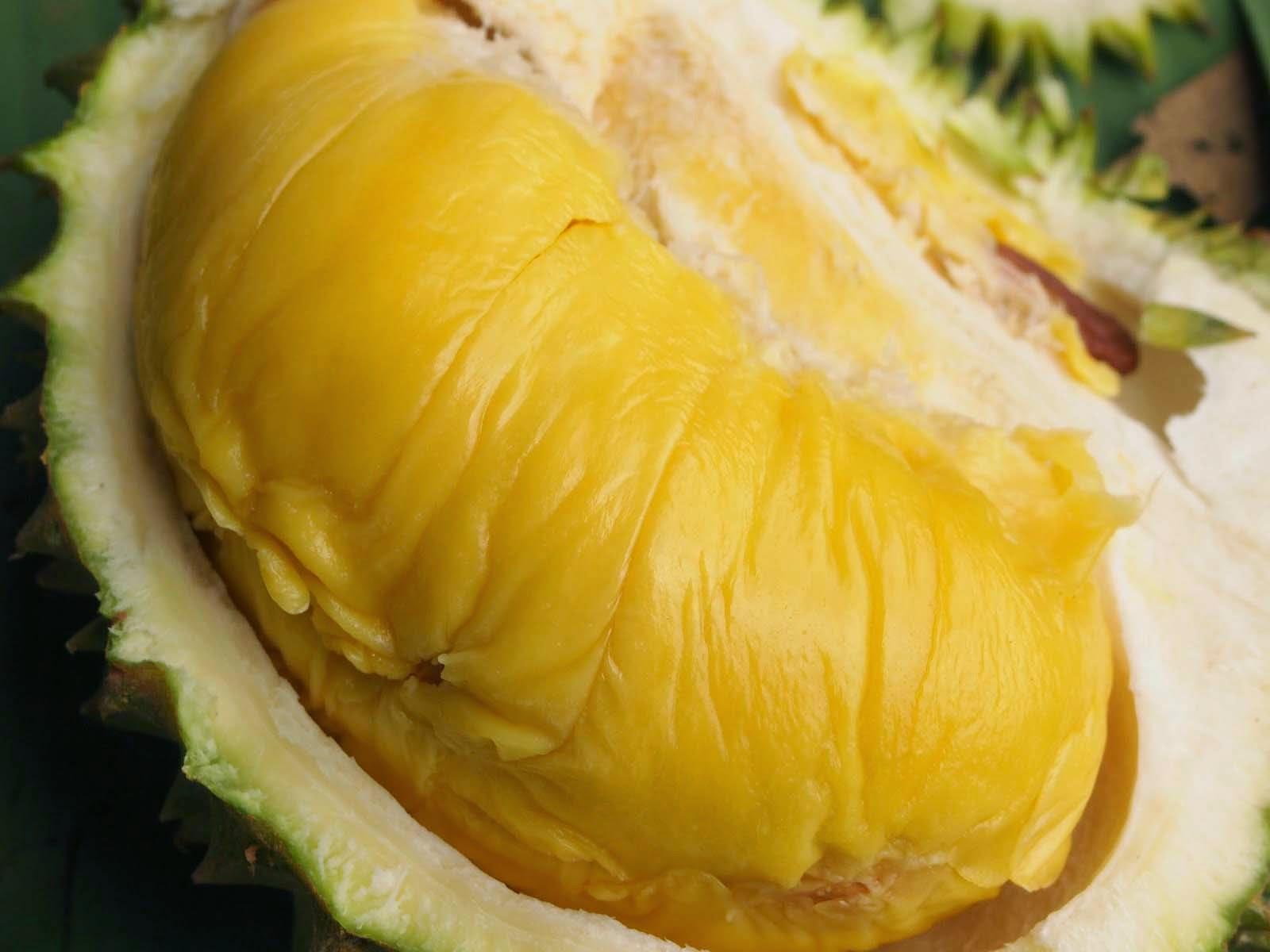 Manfaat Buah Durian untuk Kesehatan
