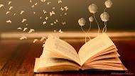 Posse na Academia de letras de São Mateus
