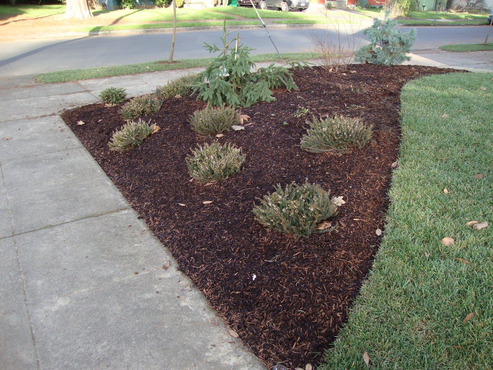 Danger Garden The Neighborhood Message Board