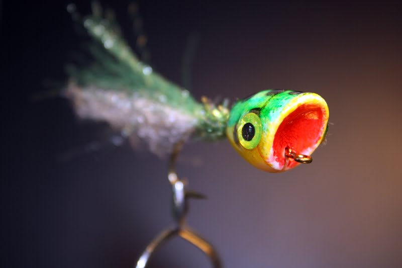 The troutology how to tie poppers or how to keep your 11 for Fly fishing poppers
