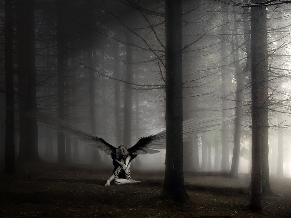 http://2.bp.blogspot.com/-v87cf1l0x-s/TkcEgJqQQJI/AAAAAAAAA_c/wu-Sc7rXSOY/s1600/angel.jpg