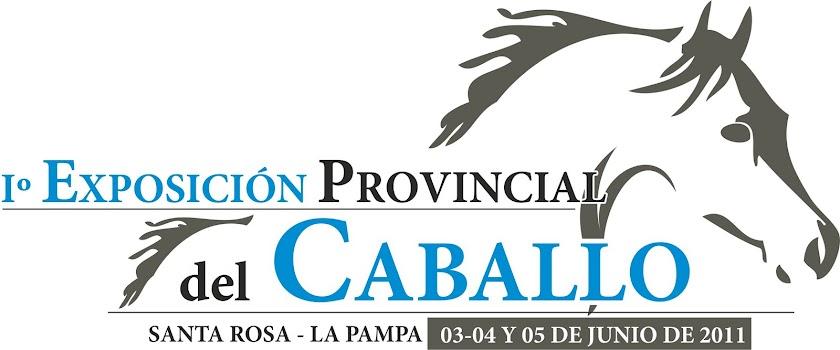 Primera exposición Provincial Del Caballo