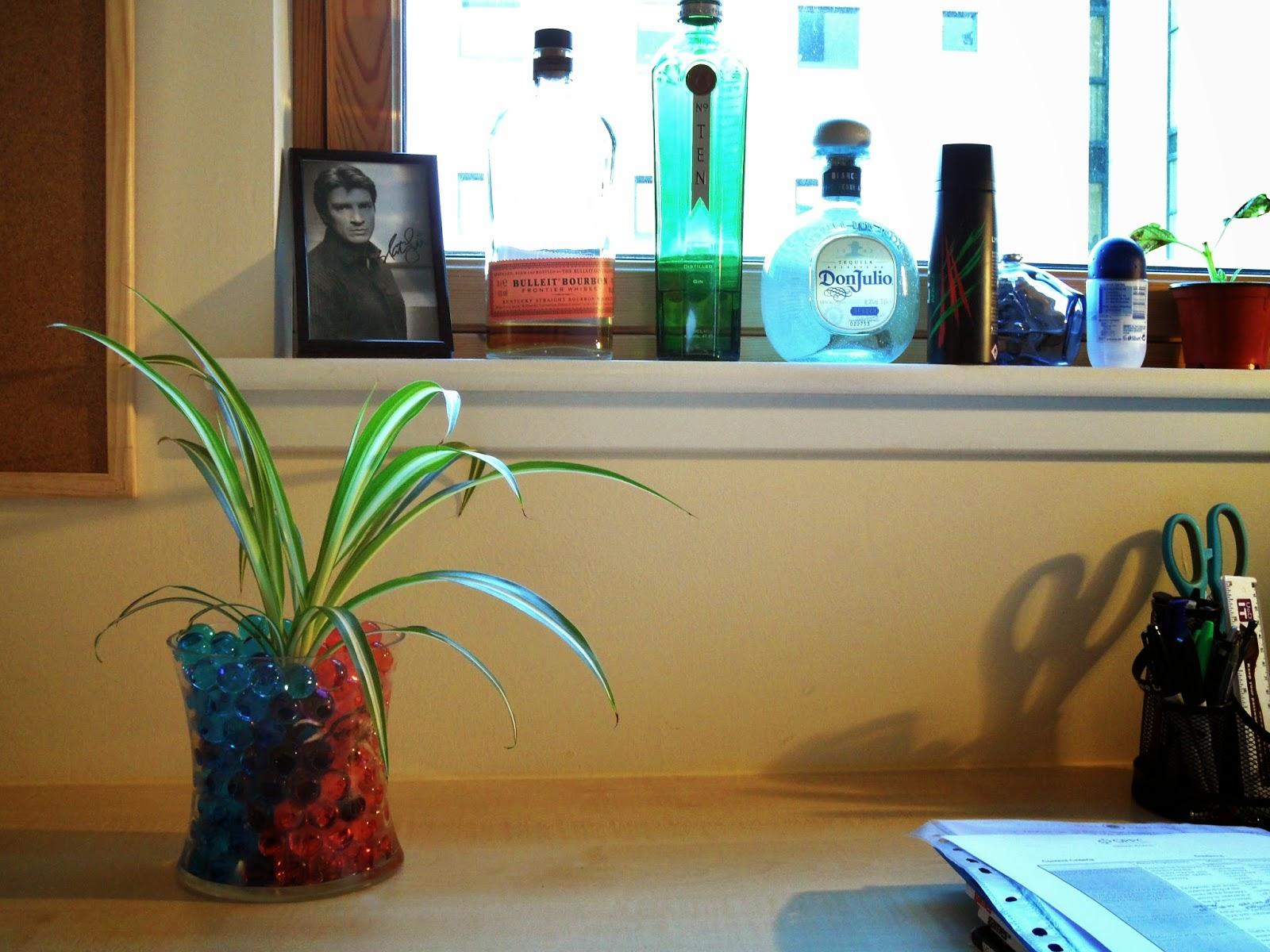Ben Thompson red and blue bio gel spider plant vase