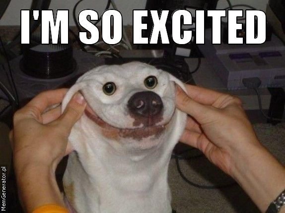 I M So Excited Funny Meme : Mayfair business association may