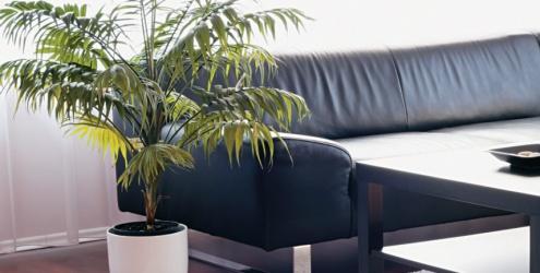 plantas1 Plantas Ideais para Sala de Apartamento