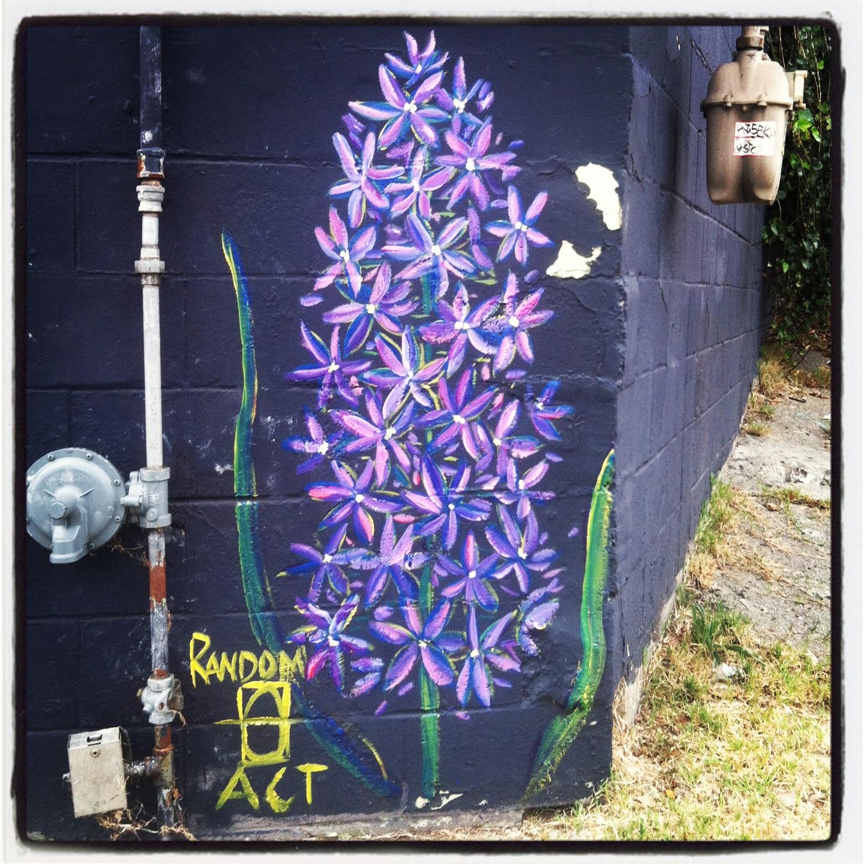 Eye The Streets Easter Hyacinth
