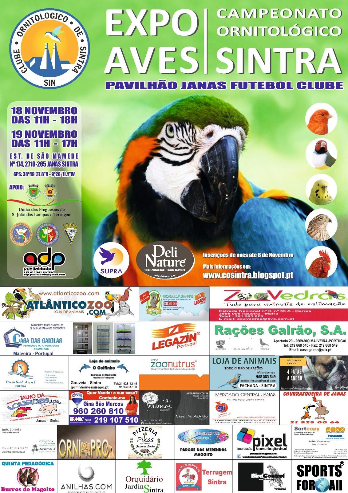 Campeonato Ornitológico de Sintra 2017