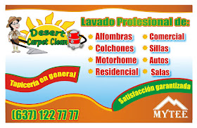 LAVADO PROFESIONAL