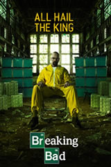 Breaking Bad 5x14 Sub Español Online