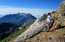 Box Elder Peak June 2012