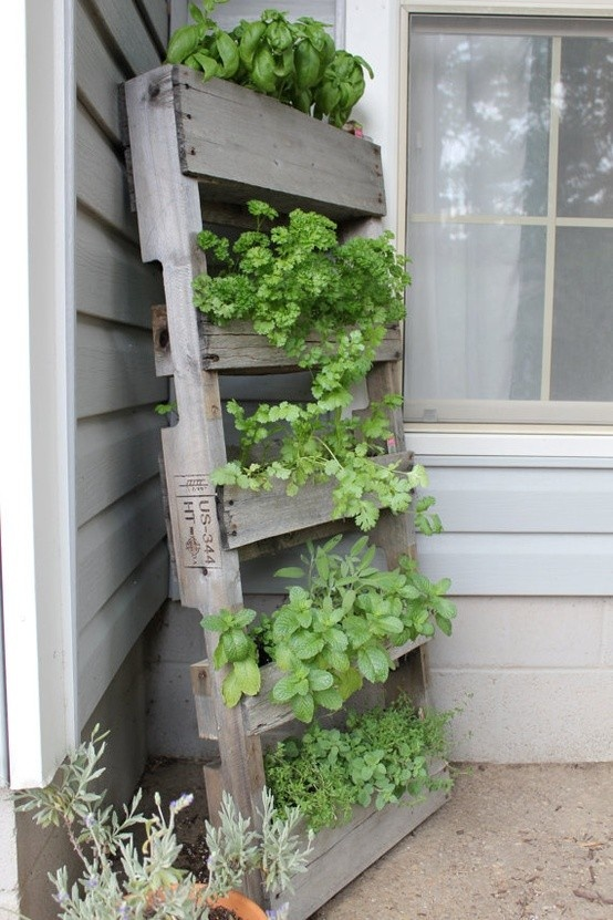 If You Have Access To Wine Bottle Boxes, Then This Is The Project For You.  Michelle Of Miss Stitch A Wish Built An Amazing Herb Garden On Her Deck  With Old ...