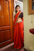 Archana veda in red saree photos-thumbnail-10
