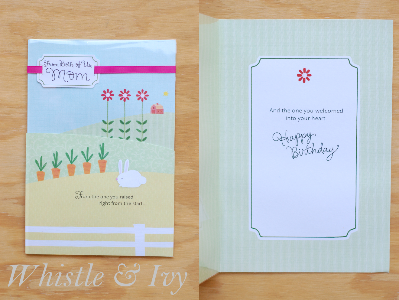 Hallmark Birthday Card Awesomeness Whistle and Ivy – Hallmark Birthday Cards