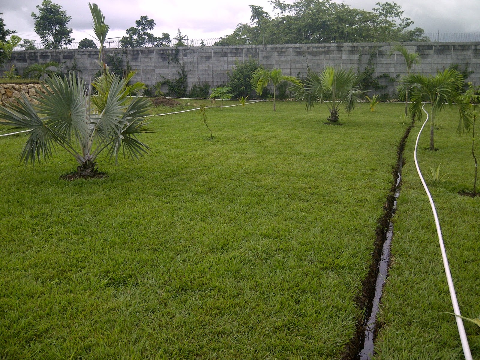 Bombas y riegos de guatemala sistema de riego for Sistema de riego por aspersion para jardin