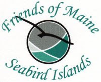 Friends of Maine Seabird Islands