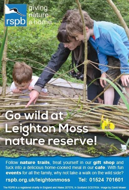 Visit RSPB Leighton Moss