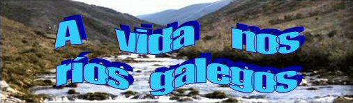 A Vida nos ríos galegos