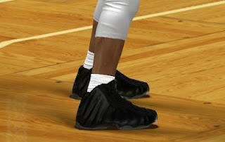 NBA 2K13 Nike Foamposite One Stealth Shoes Patch