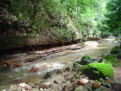 Resultado de imagem para rio da batateira