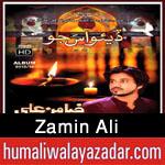 http://www.humaliwalayazadar.com/2015/10/zamin-ali-nohay-2016.html