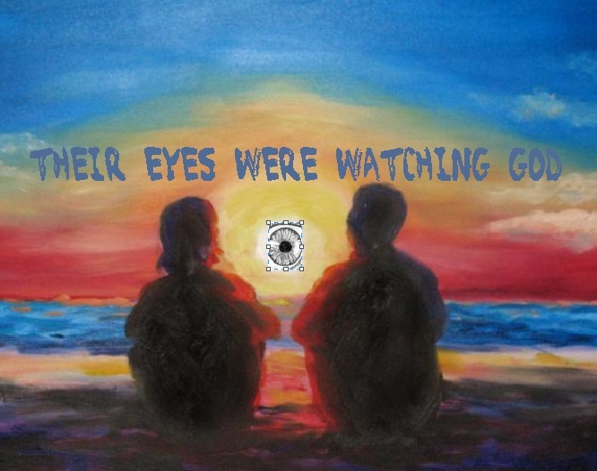 essay questions about their eyes were watching god