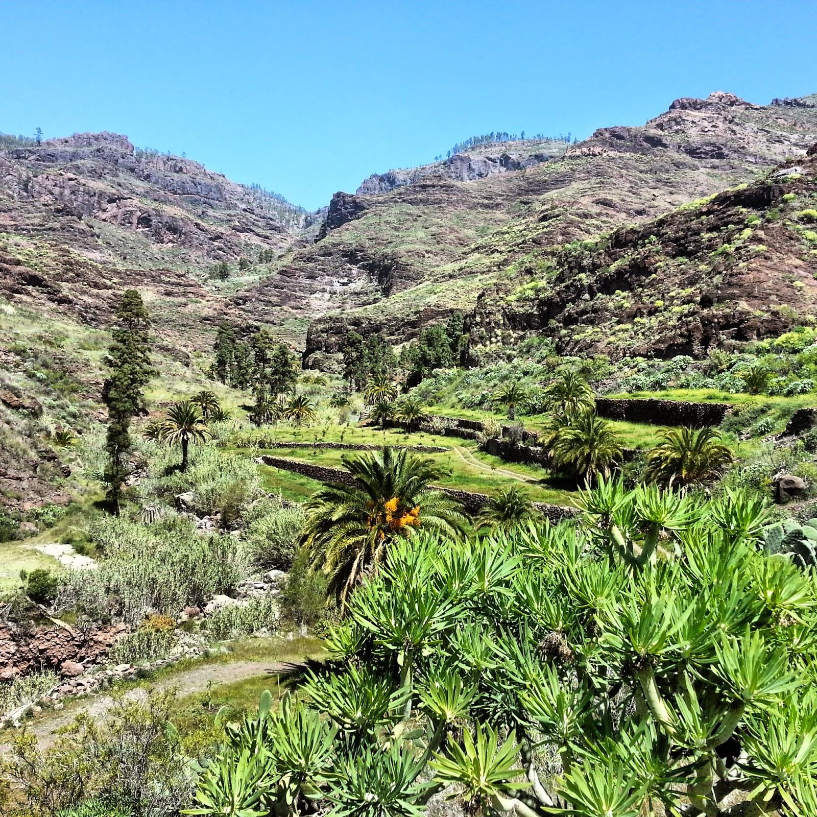 Soriatal - ein Traum in grün