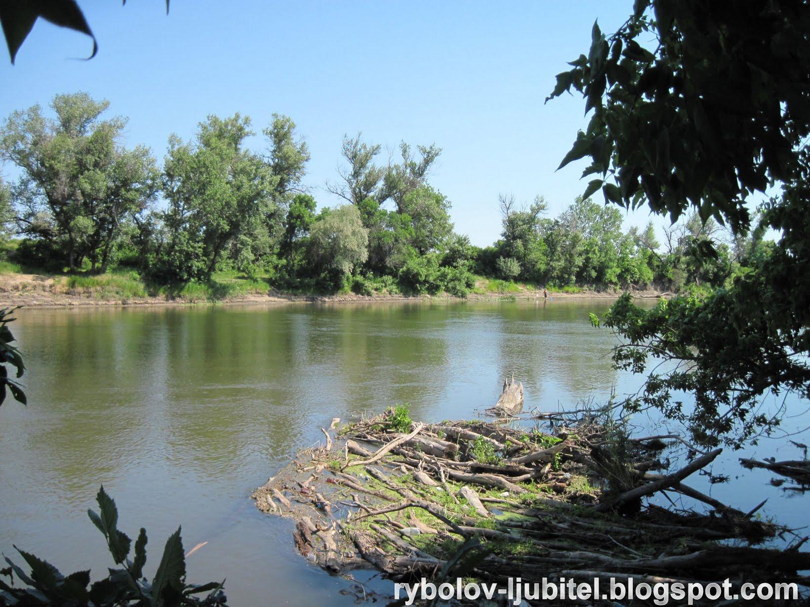 ловля рыбы на северском донце в луганской области запрет