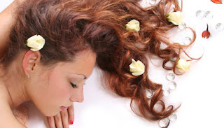 Makanan Yang Menyehatkan Rambut