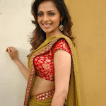 Richa Pallod - Cute n Sexy in Saree
