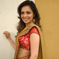 Richa pallod hot in saree