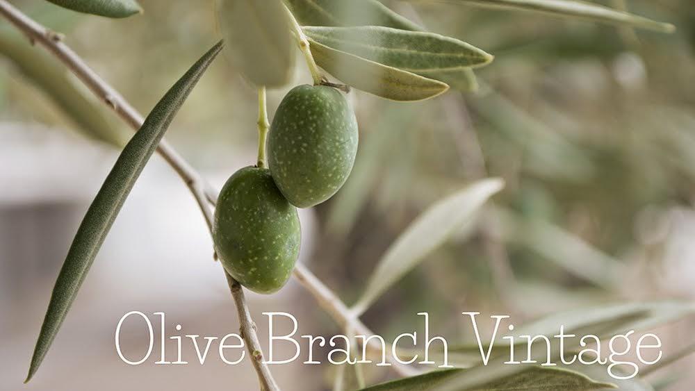 Olive Branch Vintage