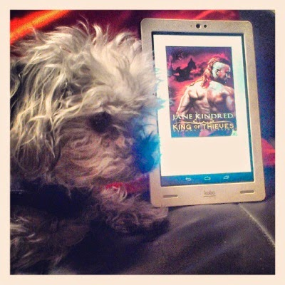 Murchie lays beside a white Kobo with King of Thieves's cover art on its screen. The orange-tinged cover depicts a pale-skinned man with a red fauxhawk. His naked back is to the viewer.