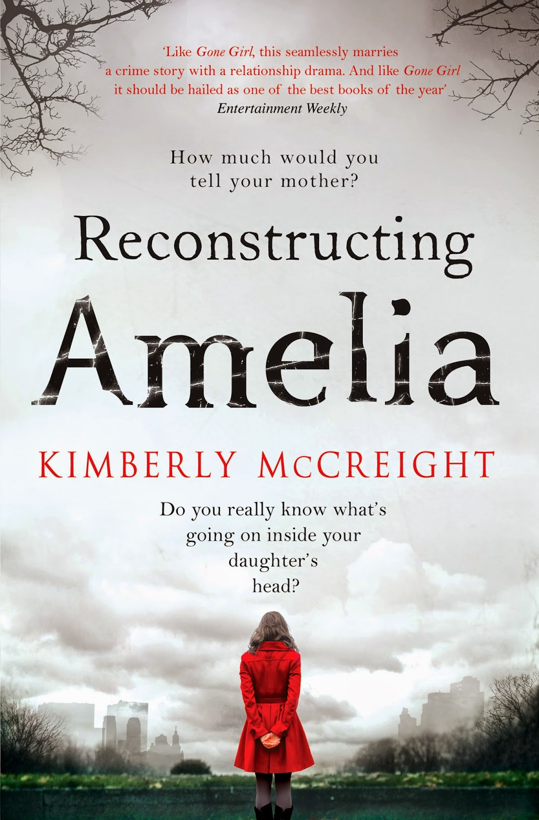 Book Review: Reconstructing Amelia by Kimberly McCreight ...