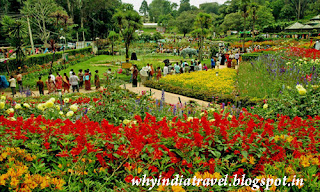 Kodaikanal Flower Garden